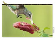 Hummingbird Nose Dive Carry-all Pouch