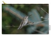 Hummingbird On A Twig Carry-all Pouch