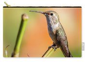 Hummingbird Perched II Carry-all Pouch