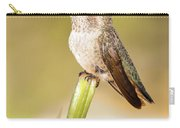 Hummingbird Perched V Carry-all Pouch