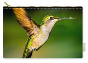 Hummingbird Sparkle Carry-all Pouch