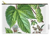 Humulus Lupulus, Common Hop Or Hop Carry-all Pouch