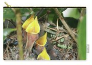 Hungry Baby Birds Carry-all Pouch