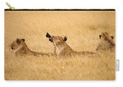 Hungry Lions Carry-all Pouch