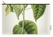 Hura Botanical Print Carry-all Pouch