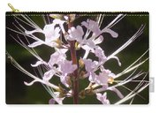 Hurricane Lilies Carry-all Pouch