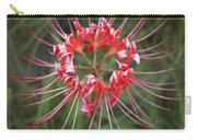 Hurricane Lily Carry-all Pouch