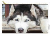Husky Eyes Carry-all Pouch