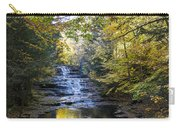 Huyck Preserve Falls Carry-all Pouch