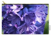 Hyacinth Highlights Carry-all Pouch