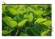 Hydrangea Foliage Carry-all Pouch by Gaspar Avila