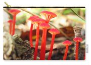 Hygrophorus Cantharellus Carry-all Pouch