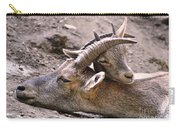 Ibex Mother And Son Carry-all Pouch
