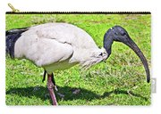Ibis Looking For Food Carry-all Pouch