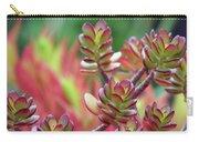 California Red Tip Crassula Ovata Jade Plant Carry-all Pouch