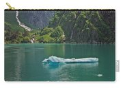 Ice Tracy Arm Alaska Carry-all Pouch