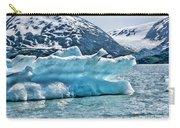 Iceberg Glacier Alaska  Carry-all Pouch