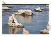 Iconic Shell Beach Carry-all Pouch