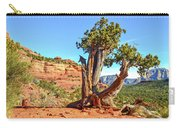 Iconic Southwest Carry-all Pouch