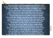 If Poem Blue Canvas Carry-all Pouch