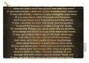 If Poem Vintage Canvas Carry-all Pouch