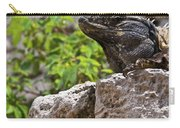 Iguana At Talum Ruins Mexico 2 Carry-all Pouch