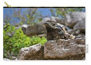 Iguana At Talum Ruins Mexico Carry-all Pouch