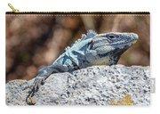 Iguana In Ek Balam Carry-all Pouch