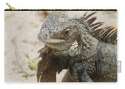 Iguana Sitting On A Sandy Beach In Aruba Carry-all Pouch