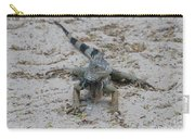 Iguana With A Striped Tail On A Sand Beach Carry-all Pouch