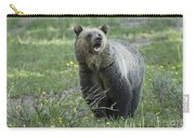 I'll Only Say This Once Carry-all Pouch by Sandra Bronstein