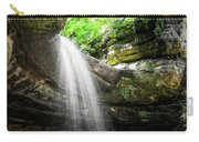 Illinois Waterfall Carry-all Pouch