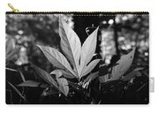 Illuminated Leaf, Black And White Carry-all Pouch