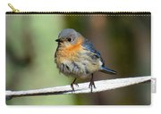Illusive Female Bluebird Carry-all Pouch