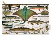 Illustration Of Ocean Fish Carry-all Pouch