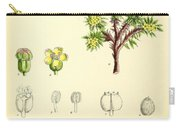 Illustrations Of The Flowering Plants And Ferns Of The Falkland Carry-all Pouch