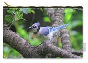 I'm Looking - Blue Jay Carry-all Pouch