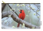 Img_0999-001 - Northern Cardinal Carry-all Pouch