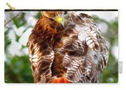 Img_1050-002 - Red-tailed Hawk Carry-all Pouch