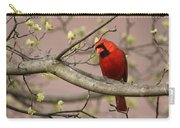 Img_1180-001 - Northern Cardinal Carry-all Pouch