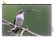 Img_1768-001 - Ruby-throated Hummingbird Carry-all Pouch
