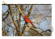 Img_2757-001 - Northern Cardinal Carry-all Pouch