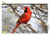 Img_2902-004 - Northern Cardinal Carry-all Pouch