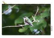 Img_3309 - Ruby-throated Hummingbird Carry-all Pouch