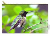 Img_3524-002 - Ruby-throated Hummingbird Carry-all Pouch