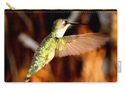 Img_4625 - Ruby-throated Hummingbird Carry-all Pouch