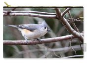 Img_4672 - Tufted Titmouse Carry-all Pouch