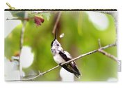 Img_7436-020 - Ruby-throated Hummingbird Carry-all Pouch