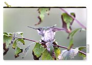 Img_9114-003 - Ruby-throated Hummingbird Carry-all Pouch