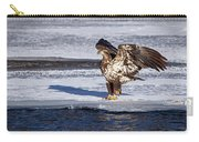 Immature Eagle On Ice Carry-all Pouch